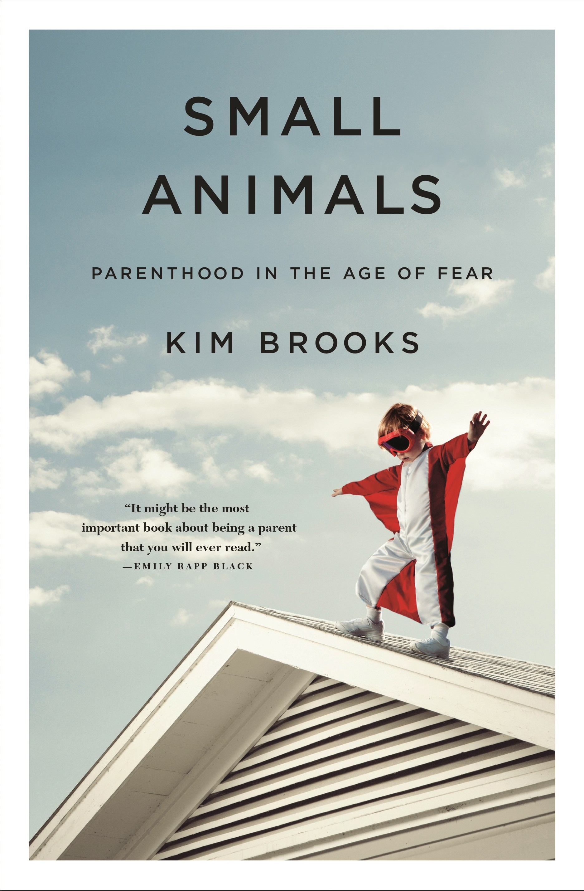 Small Animals Book Cover